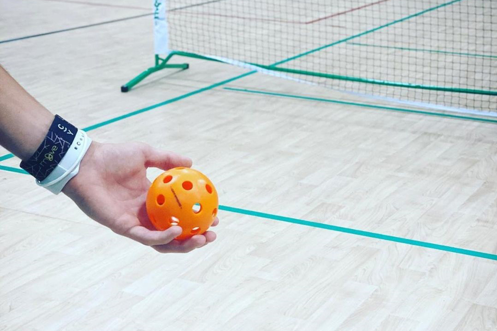 Adult Pickleball Leagues