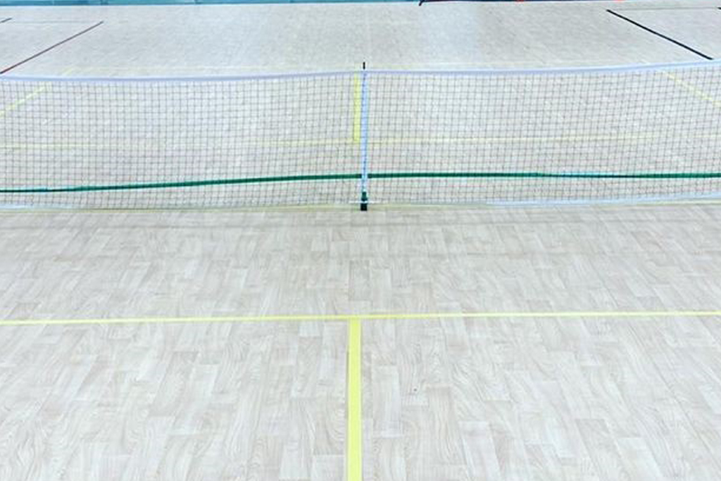 Adult Pickleball Open Play
